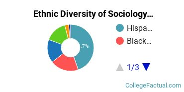 Ethnic Diversity of Sociology Majors at CUNY Hunter College
