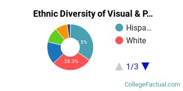 Ethnic Diversity of Visual & Performing Arts Majors at CUNY Hunter College