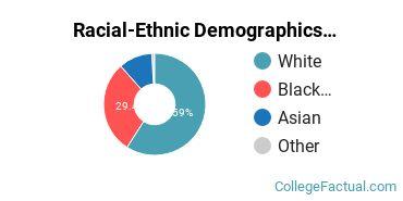 Racial-Ethnic Demographics of Lehman Faculty