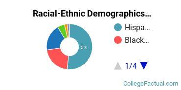 Lehman College Graduate Students Racial-Ethnic Diversity Pie Chart