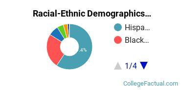 Lehman College Undergraduate Racial-Ethnic Diversity Pie Chart
