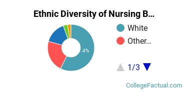 Ethnic Diversity of Nursing Majors at Curry College