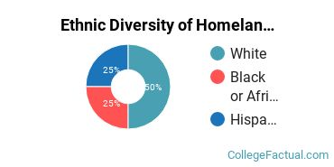 Ethnic Diversity of Homeland Security, Law Enforcement & Firefighting Majors at Dallas Baptist University