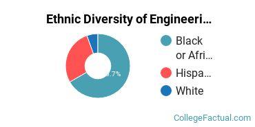 Ethnic Diversity of Engineering Physics Majors at Delaware State University