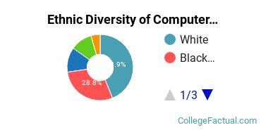 Ethnic Diversity of Computer & Information Sciences Majors at Delgado Community College