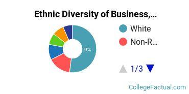 Ethnic Diversity of Business, Management & Marketing Majors at Denison University