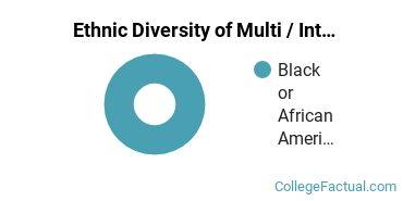 Ethnic Diversity of Multi / Interdisciplinary Studies Majors at Denmark Technical College