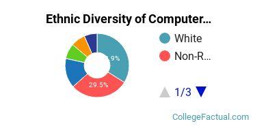 Ethnic Diversity of Computer & Information Sciences Majors at DePaul University