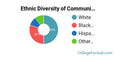 Ethnic Diversity of Communication & Journalism Majors at DeVry University - Illinois