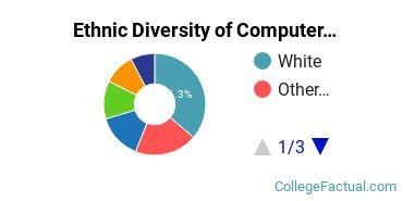 Ethnic Diversity of Computer & Information Sciences Majors at DeVry University - Illinois
