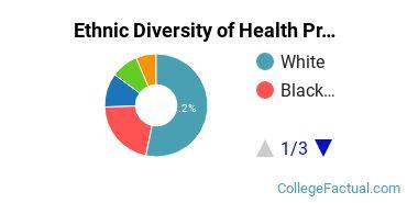 Ethnic Diversity of Health Professions Majors at DeVry University - Illinois