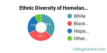 Ethnic Diversity of Homeland Security, Law Enforcement & Firefighting Majors at DeVry University - Illinois
