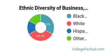 Ethnic Diversity of Business, Management & Marketing Majors at DeVry University - Indiana