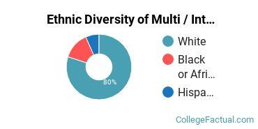 Ethnic Diversity of Multi / Interdisciplinary Studies Majors at Dickinson State University