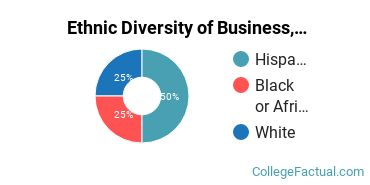 Ethnic Diversity of Business, Management & Marketing Majors at Donnelly College