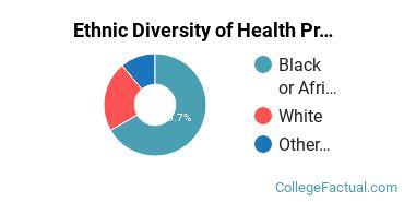 Ethnic Diversity of Health Professions Majors at Donnelly College