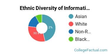 Ethnic Diversity of Information Technology Majors at Drexel University