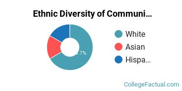 Ethnic Diversity of Communications Technologies & Support Majors at Dunwoody College of Technology