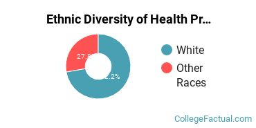 Ethnic Diversity of Health Professions Majors at Dunwoody College of Technology
