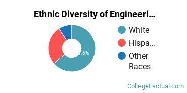 Ethnic Diversity of Engineering Majors at Duquesne University