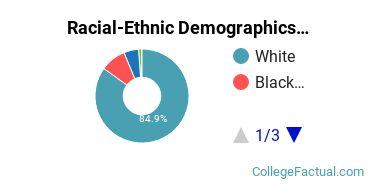 Racial-Ethnic Demographics of East Stroudsburg University Faculty