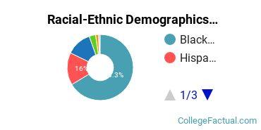 East-West University Undergraduate Racial-Ethnic Diversity Pie Chart