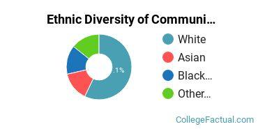 Ethnic Diversity of Communication & Media Studies Majors at Edinboro University of Pennsylvania