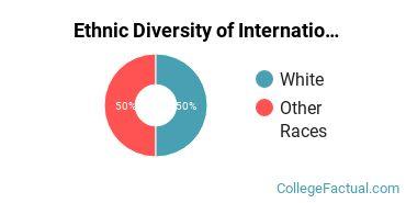 Ethnic Diversity of International Relations & National Security Majors at Elmira College