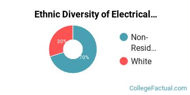 Ethnic Diversity of Electrical Engineering Majors at Embry Riddle Aeronautical University - Daytona Beach