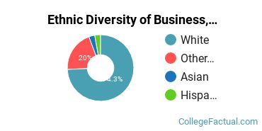 Ethnic Diversity of Business, Management & Marketing Majors at Evangel University