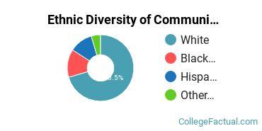 Ethnic Diversity of Communication & Media Studies Majors at Fairleigh Dickinson University - Florham Campus