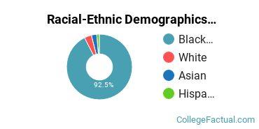 Felbry College School of Nursing Undergraduate Racial-Ethnic Diversity Pie Chart