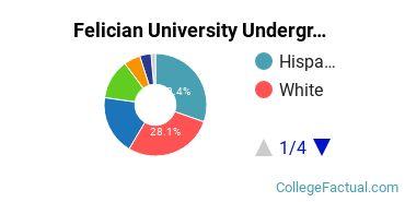 Felician Undergraduate Racial-Ethnic Diversity Pie Chart