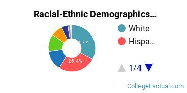 Felician University Graduate Students Racial-Ethnic Diversity Pie Chart