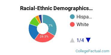 Felician University Undergraduate Racial-Ethnic Diversity Pie Chart