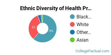 Ethnic Diversity of Health Professions Majors at Fortis College - Indianapolis