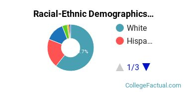 Fortis Institute - Forty Fort Undergraduate Racial-Ethnic Diversity Pie Chart