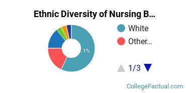Ethnic Diversity of Nursing Majors at Georgetown University