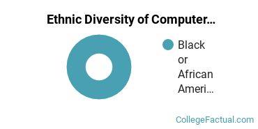 Ethnic Diversity of Computer Systems Networking Majors at Herzing University - Atlanta