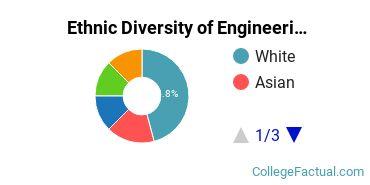 Ethnic Diversity of Engineering Science Majors at Hofstra University