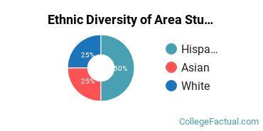 Ethnic Diversity of Area Studies Majors at Hofstra University