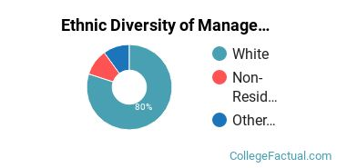Ethnic Diversity of Management Information Systems Majors at Indiana State University