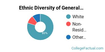 Ethnic Diversity of General Management Information Systems Majors at Indiana State University