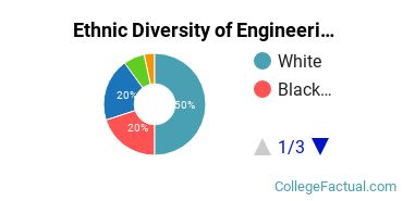 Ethnic Diversity of Engineering Technologies Majors at Indiana State University