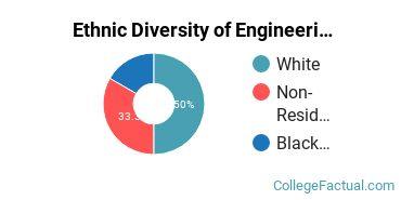 Ethnic Diversity of Engineering Physics Majors at Juniata College