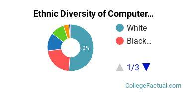 Ethnic Diversity of Computer & Information Sciences Majors at Kaplan University - Davenport Campus