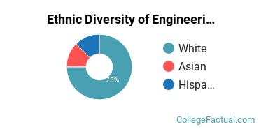 Ethnic Diversity of Engineering Physics Majors at Kettering University