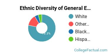 Ethnic Diversity of General English Literature Majors at Lesley University