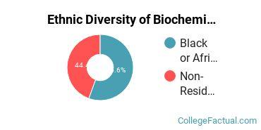Ethnic Diversity of Biochemistry, Biophysics & Molecular Biology Majors at Lincoln University