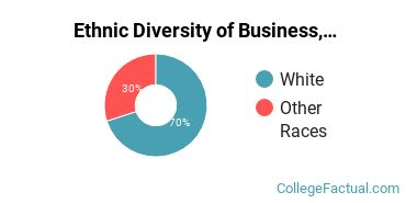 Ethnic Diversity of Business, Management & Marketing Majors at Lindsey Wilson College